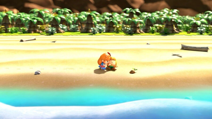 Marin Finds Link on the beach