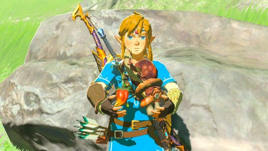 Zelda: Breath of the Wild Ingredients