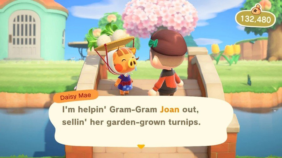 Turnips Animal Crossing New Horizons