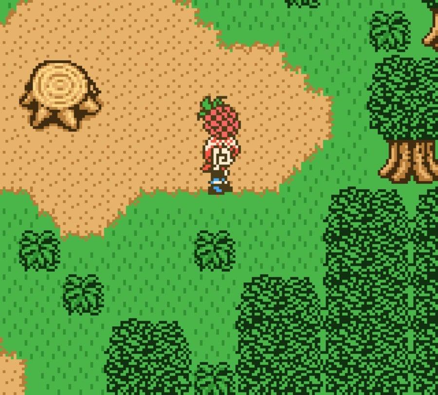 Harvest Moon GBC 2 (51)