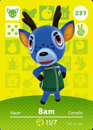 Bam amiibo card