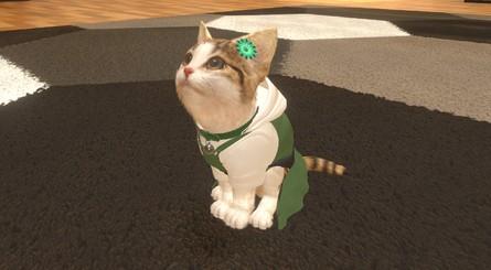 Kantele Corde Cat2