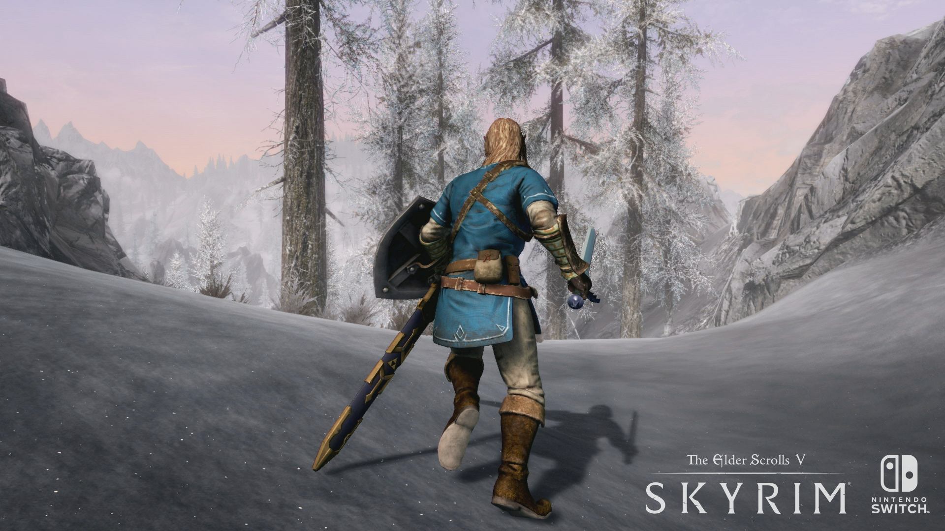 Skyrim Switch.png