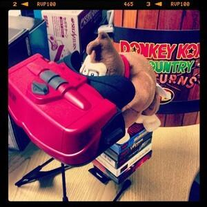 Donkey Kong gazes into 2014