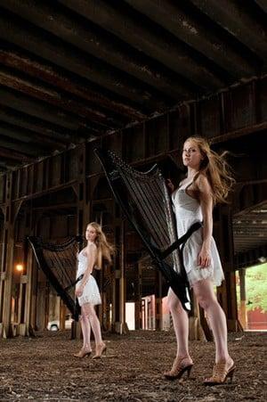 """... and smaller, """"mini harps"""""""