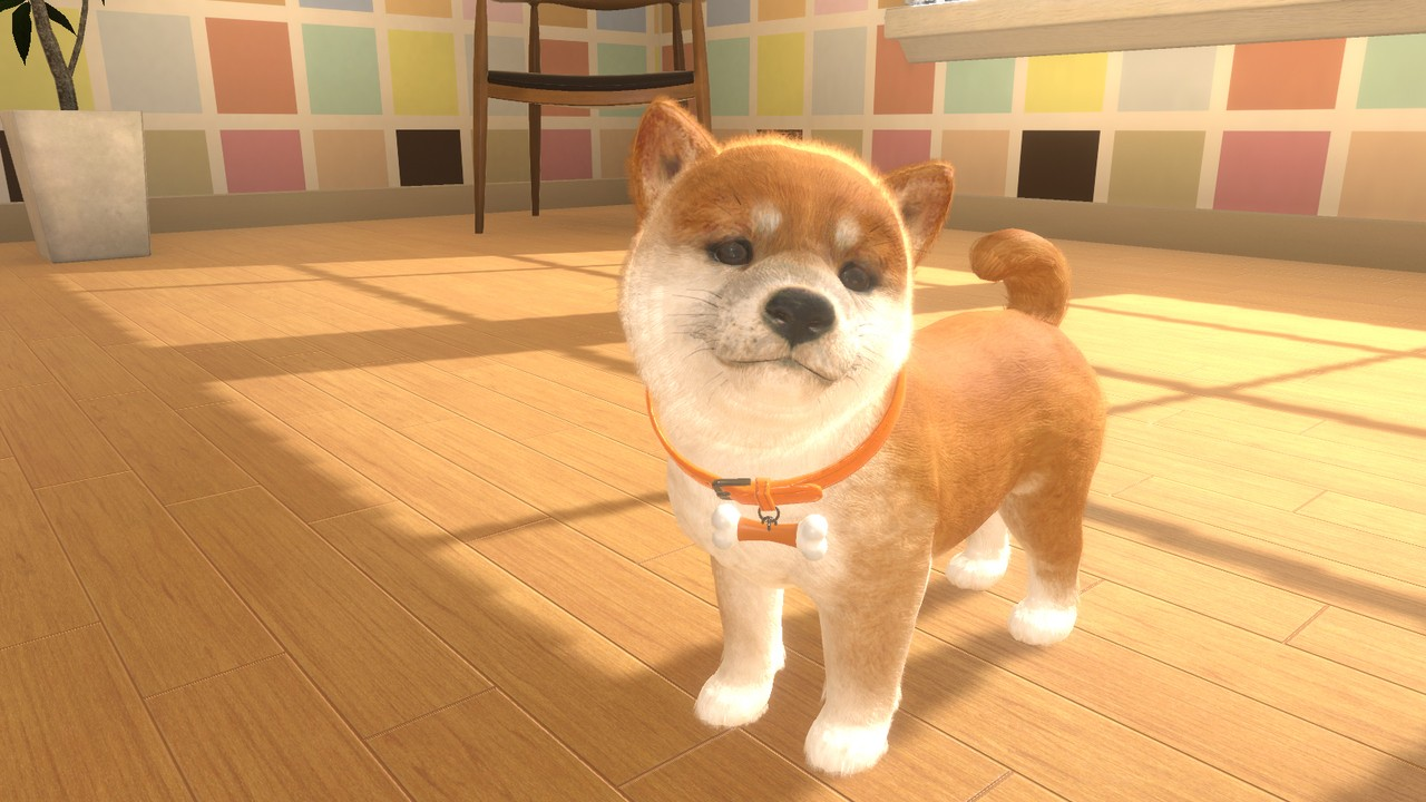Little Friends: Dogs & Cats Is A Nintendogs-Style Game