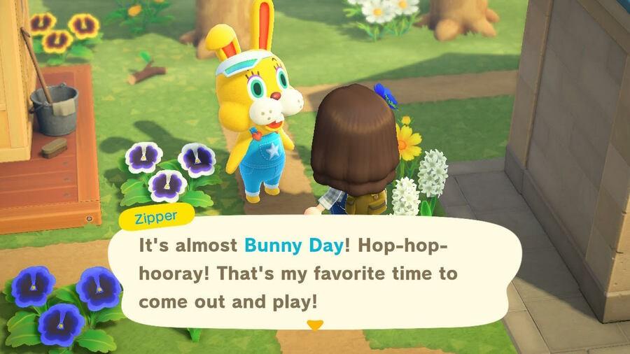 Animal Crossing Bunny Guide 7