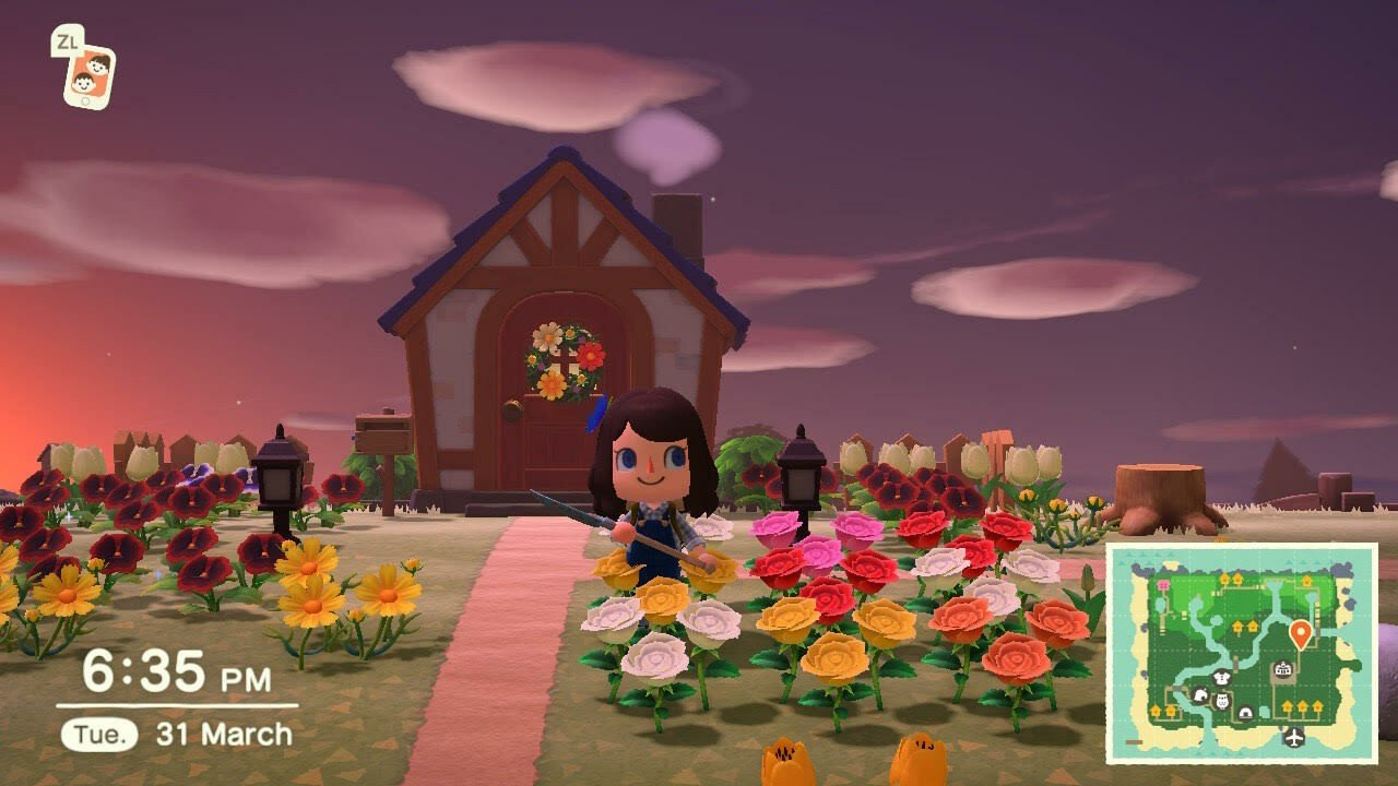 Animal Crossing: New Horizons: How To Grow And Breed ...