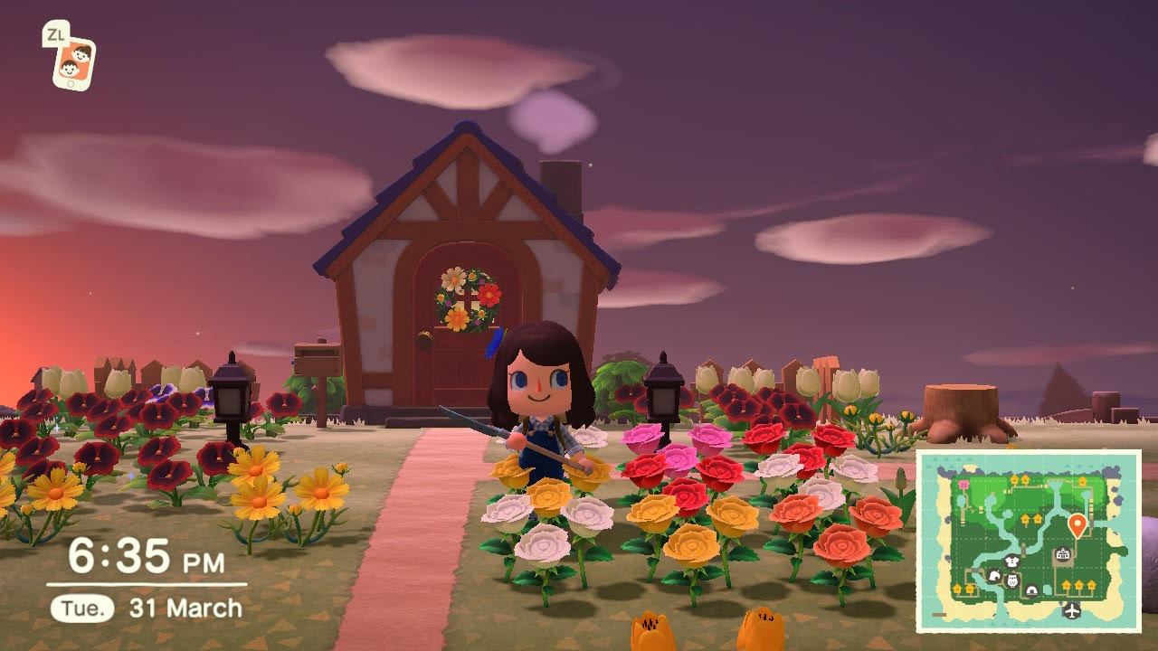 Animal Crossing New Horizons How To Grow And Breed Flowers