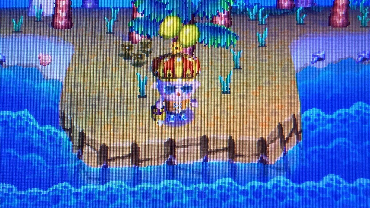 Feature: 10 Years Later, We Return To Our Abandoned Animal Crossing: Wild World Village