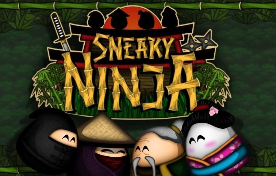 Sneaky Ninja IMG1