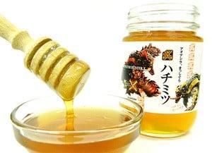 Monster Hunter Honey