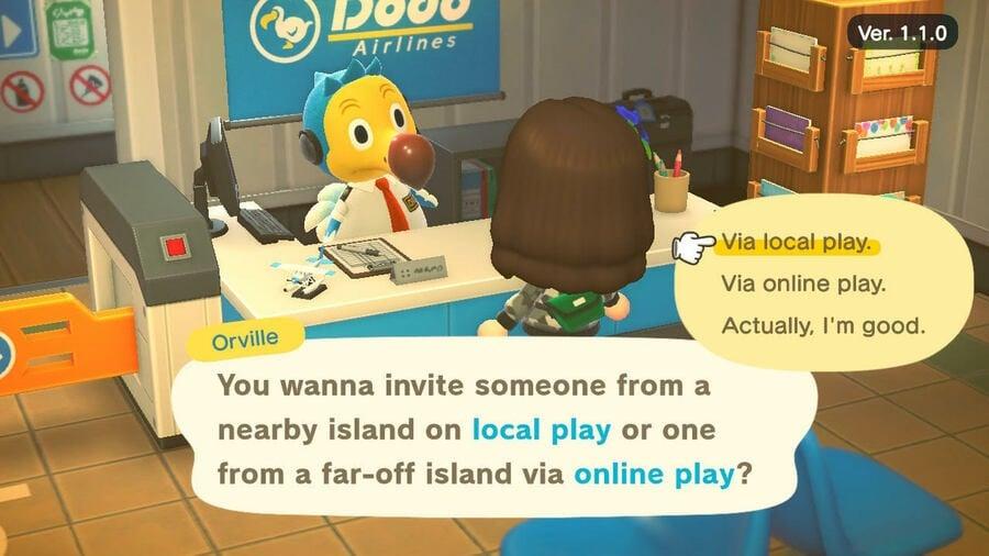 Animal Crossing Multiplayer