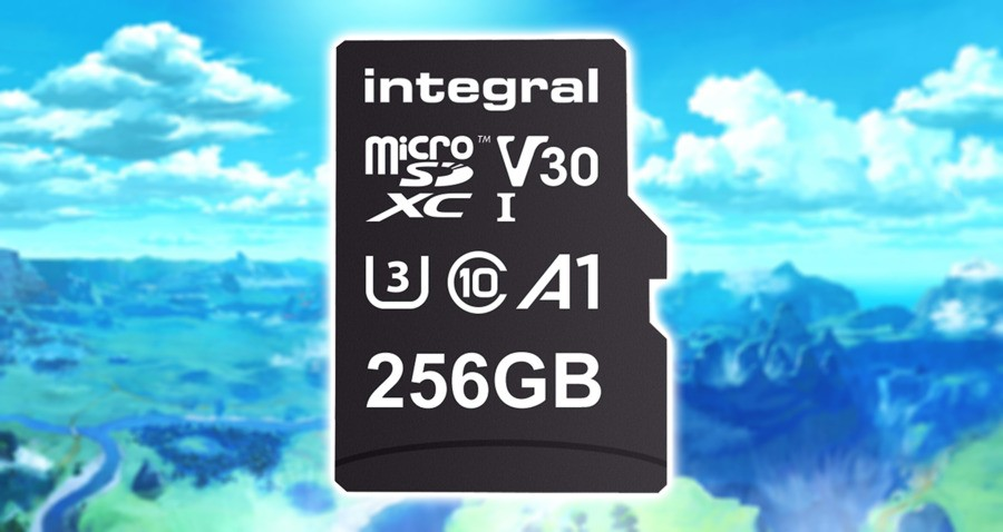 Get An Amazing Deal On This 256 GB Micro SD Card For Your Nintendo Switch