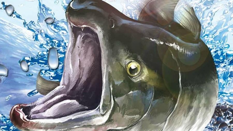 Reelfishing