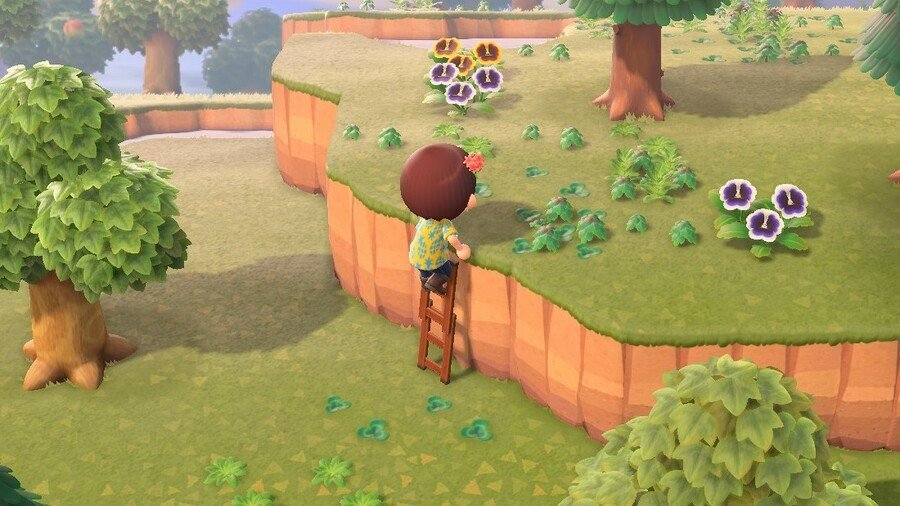 Animal Crossing New Leaf Ladder