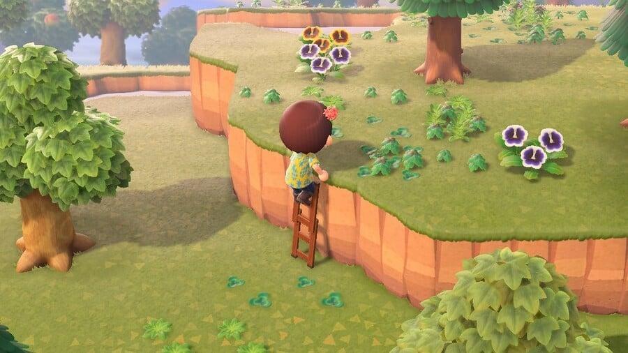 Animal Crossing New Leaf Ladder