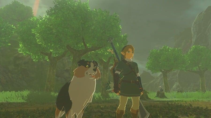 Zelda - Dog