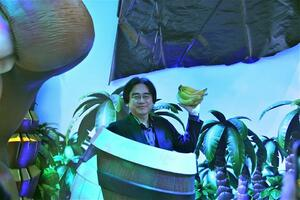 Iwata and bananas, the remix