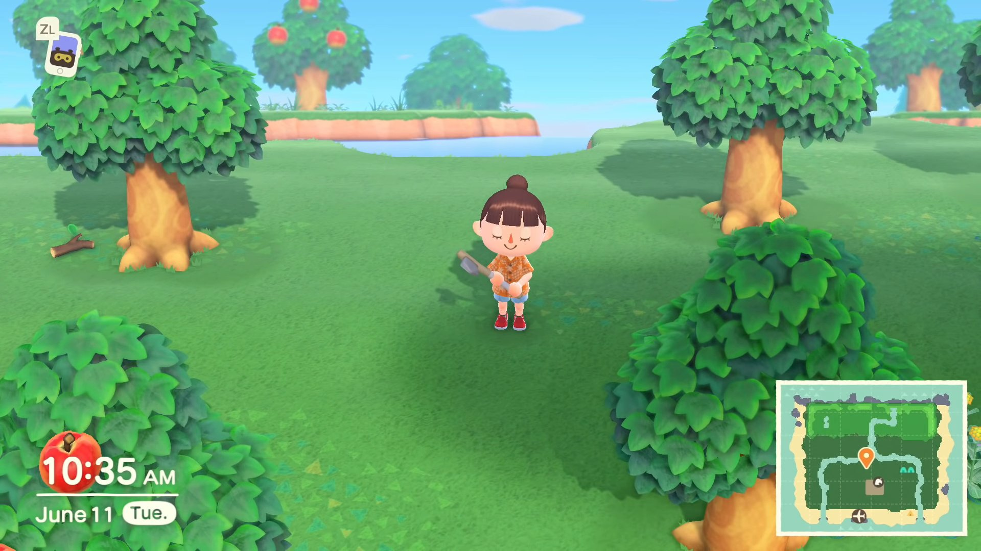Animal Crossing: New Horizons Caters For Players In The Southern Hemisphere, Finally