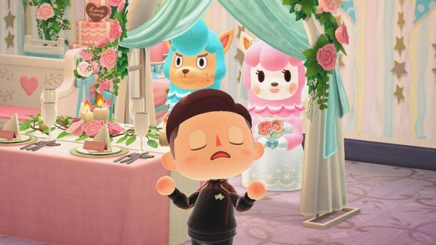 Animal Crossing New Horizons Wedding Season Tired