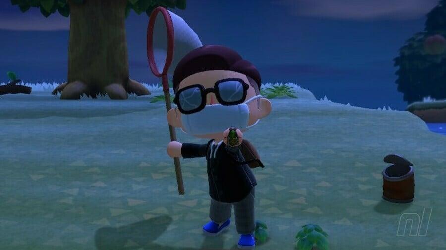 Fly Animal Crossing New Horizons
