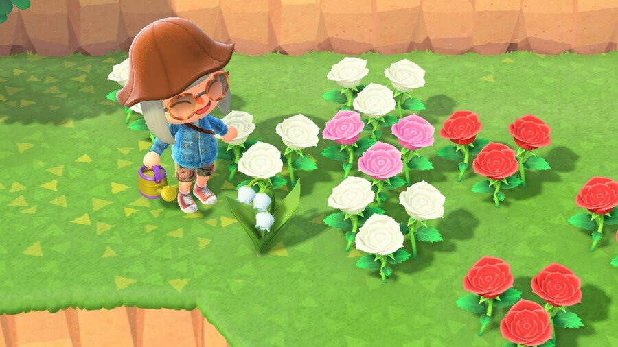 Receive a recipe for a golden watering can, and begin seeing Lily of the Valley flowers grow, after achieving a 5 star island rating