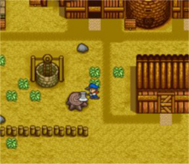 Manage a farm in Harvest Moon
