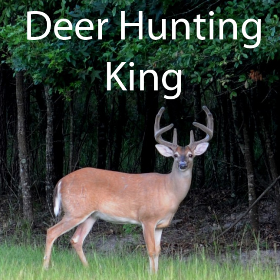 Deer Hunting King