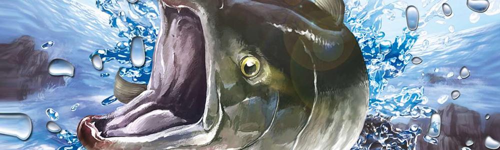 Reel fishing 3d paradise mini 3ds eshop news reviews for Reel fishing game