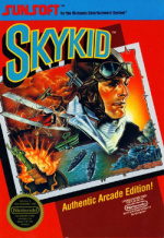 Sky Kid
