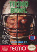 Tecmo Bowl Cover (Click to enlarge)
