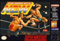 Natsume Championship Wrestling Cover Artwork
