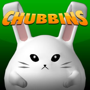 Chubbins