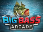 Big Bass Arcade Cover (Click to enlarge)