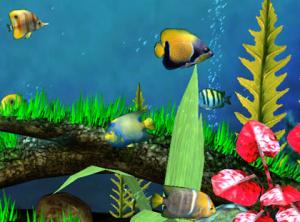 Fish FTW!