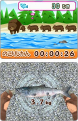 Help the bear get the fish, yum yum!