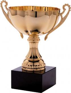 Who will take home a virtual award?