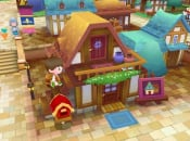 Level 5:  Fantasy Life Will Become A Series