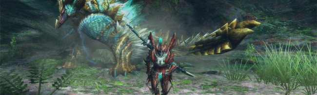 Monster Hunter 3 U Banner