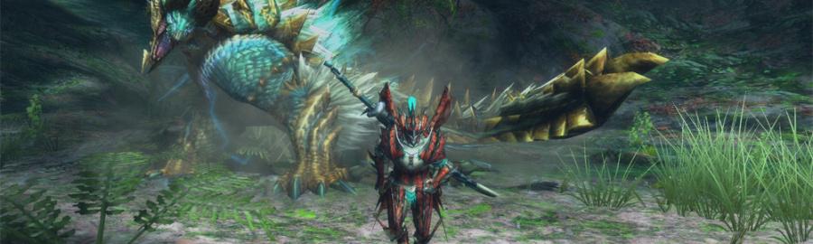 Monster Hunter 3 U Banner