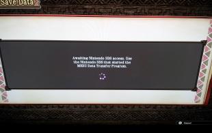 Wii U Awaiting 3 DS