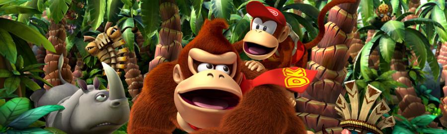 Donkey Kong 3 D Banner