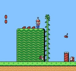Not your typical Mario platformer