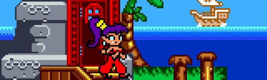 Shantae Banner
