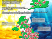 Pokémon Omega Ruby and Alpha Sapphire Infographic Shows the Eon Ticket's Journey Through the UK