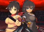 Swedish Newspaper Questions The European Release Of Senran Kagura 2: Deep Crimson
