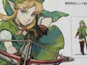 Could Female Link Be In Hyrule Warriors On 3DS?