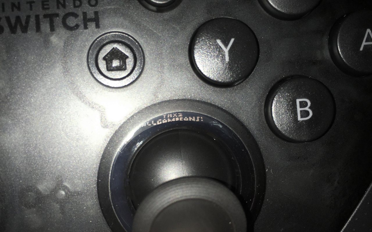 https://images.nintendolife.com/news/2017/03/have_you_seen_the_hidden_message_inside_your_switch_pro_controller/attachment/0/large.jpg