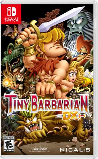 Tiny Barbarian DX - box